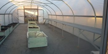 Poly Tunnel Repair